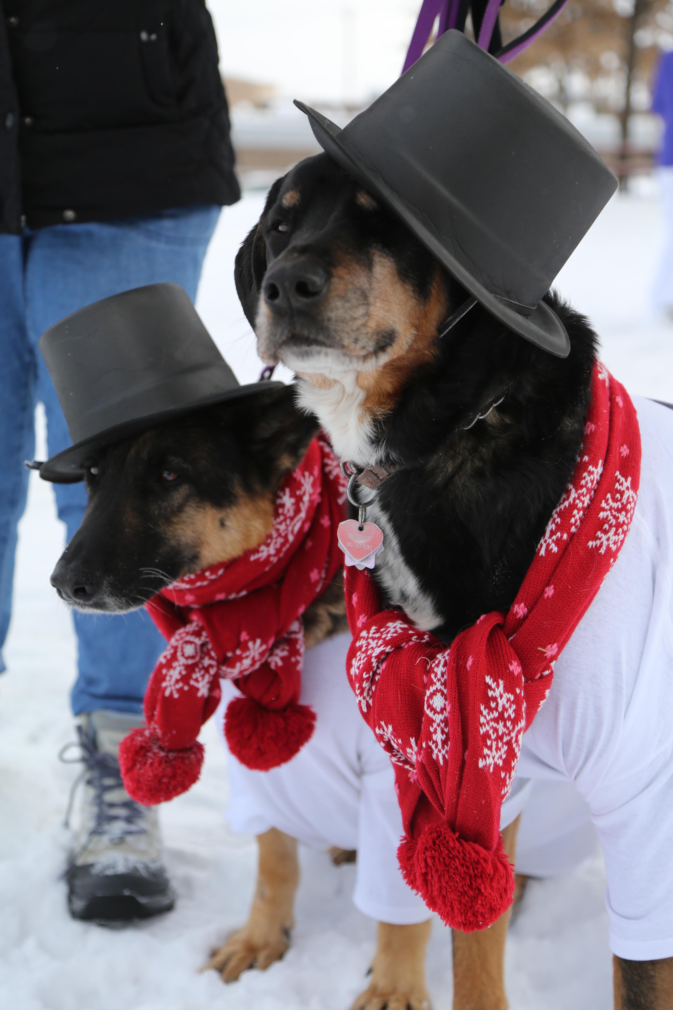 Scenes from Alden's Winterfest