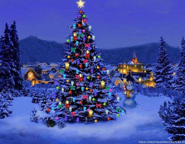 Christmas in Marilla this Saturday (Dec.13th)